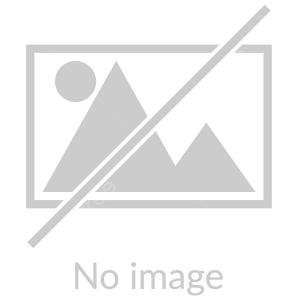 کسب سهمیه برای ایران در تپانچه ۱۰ متر